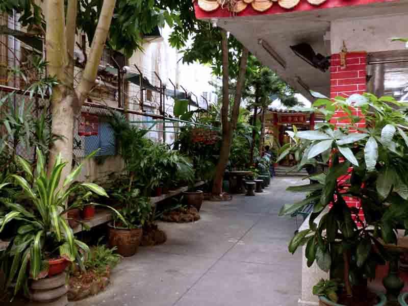 Достопримечательности: Сад Сан-Кио