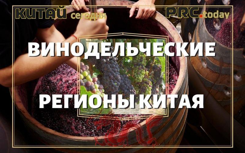 Винодельческая отрасль
