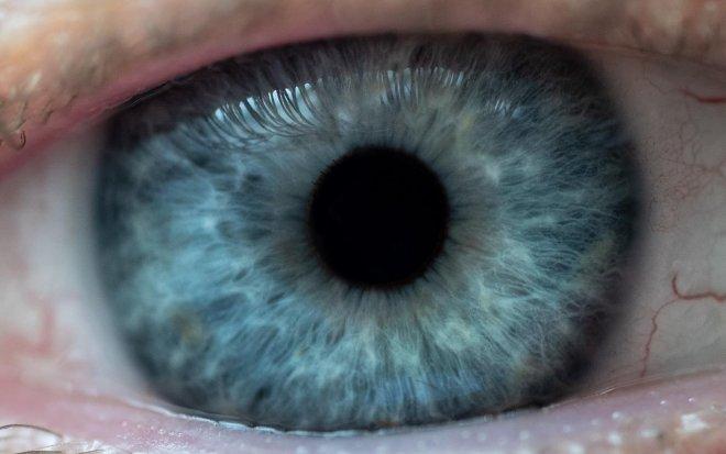 Лучшие новости о защите глаз от глаукомы с помощью инъекции гидрогеля.