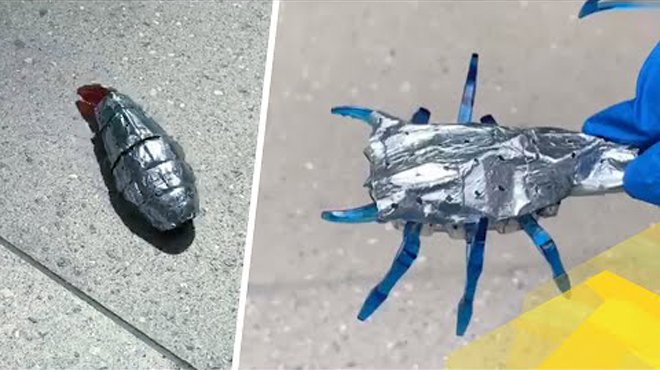 Лучшие новости о возможности запасать энергию для роботов с помощью биоморфных батарей.