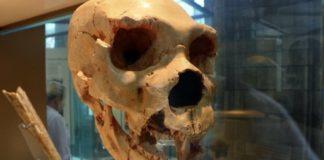 Лучшие новости о попытках наших древних предков погрузится в анабиоз.