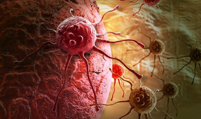 Лучшие новости об испытаниях вакцины от рака на людях.