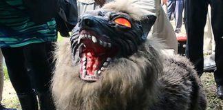 Лучшие новости о решении Японии отпугивать медведей волками-роботами.