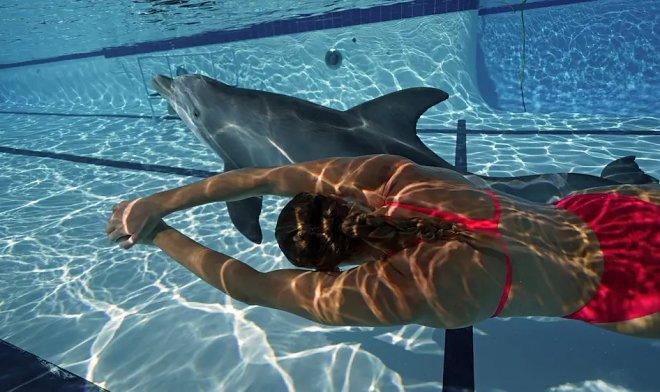 Лучшие новости о создании гиперреалистичного робота-дельфина