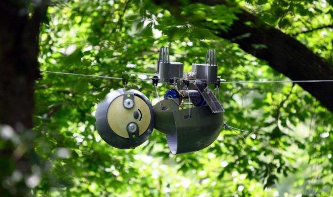 Лучшие новости об исследовании джунглей с помощью робота -ленивца SlothBot.