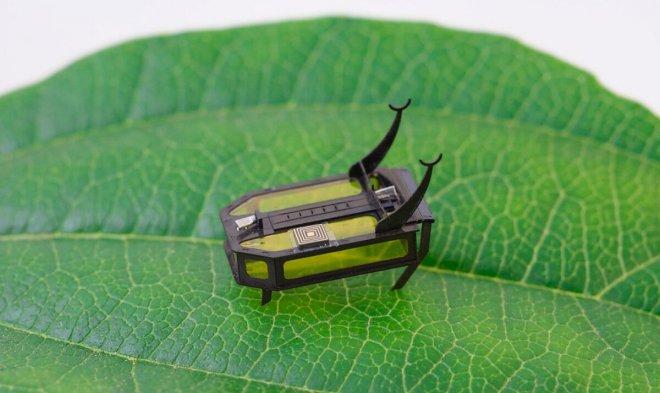 Лучшие новости о создании в США робота-жука, работающего с помощью спирта.
