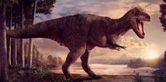 Лучшие новости о размере новорожденных тираннозавров.